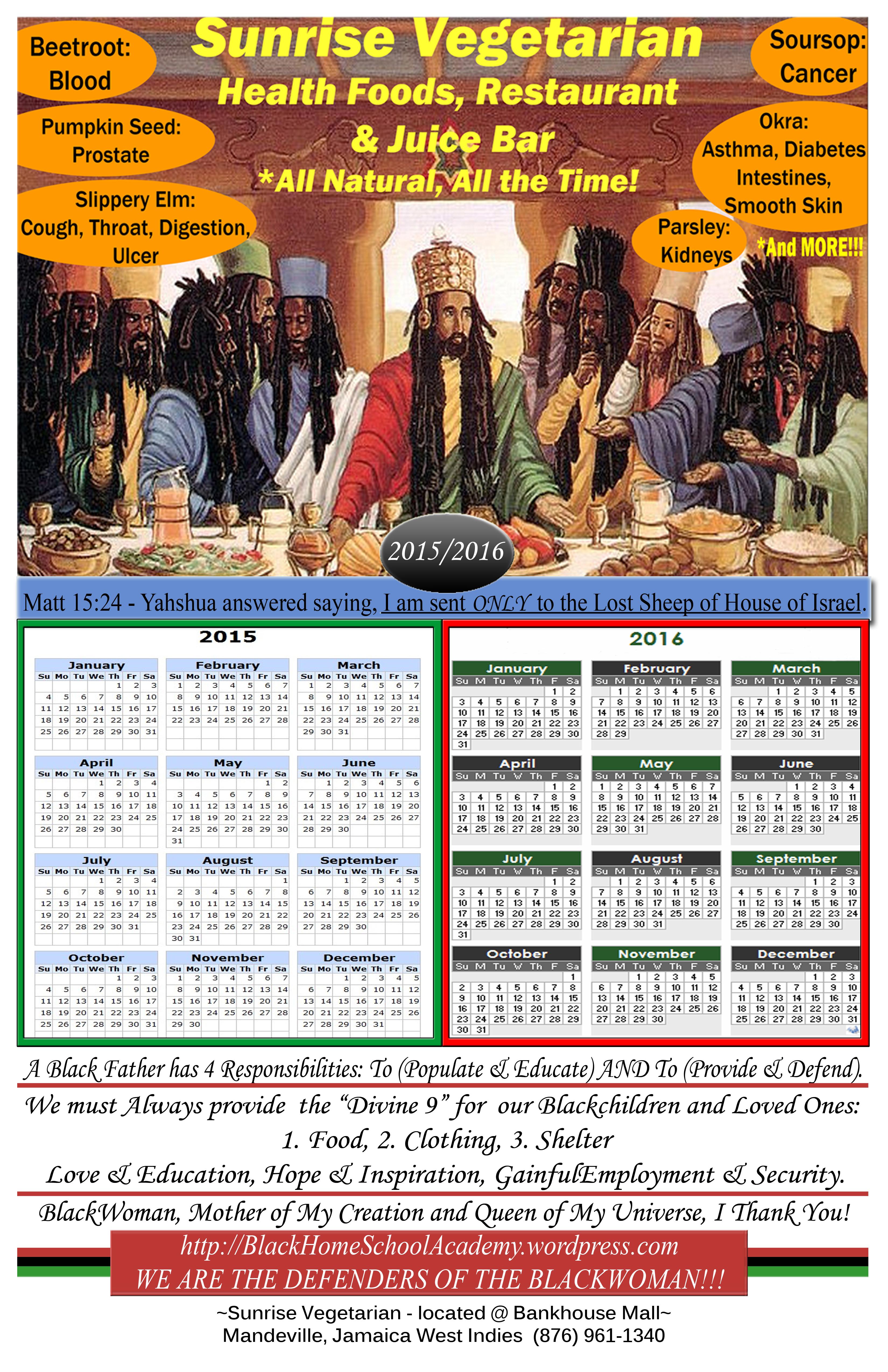 11x17 calendar 2015